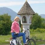 E-Bike (1)