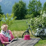 E-Bike (2)